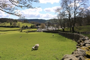 The village of Near Sawrey - many of its scenes can be recognised in The Tale of Ginger and Pickles