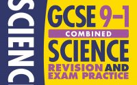 Scholastic GCSE Revision Guides